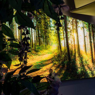 Besonders bei Dunkelheit wird der Raum mit dem hinterleuchteten Wandbild zum Highlight